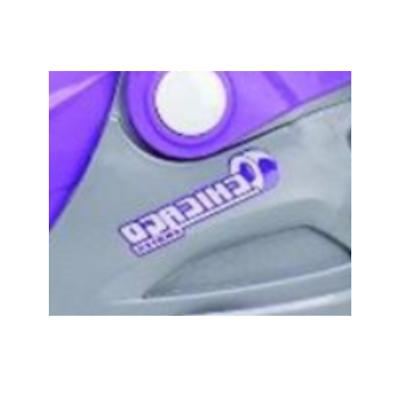 Girls RollerSkates Silver Purple